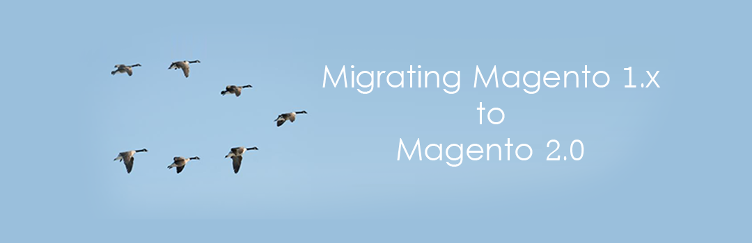 Magento 1.x to Magento 2.x Migration