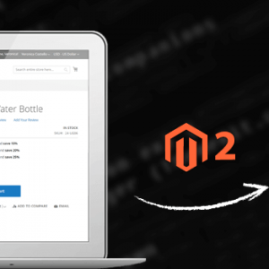 How to Set Tier Price Programmatically in Magento 2