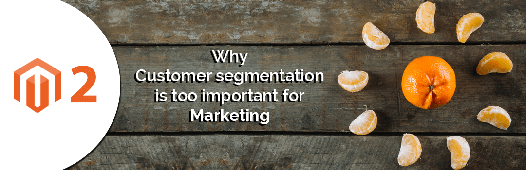 Why Customer segmentation is too important for Marketing
