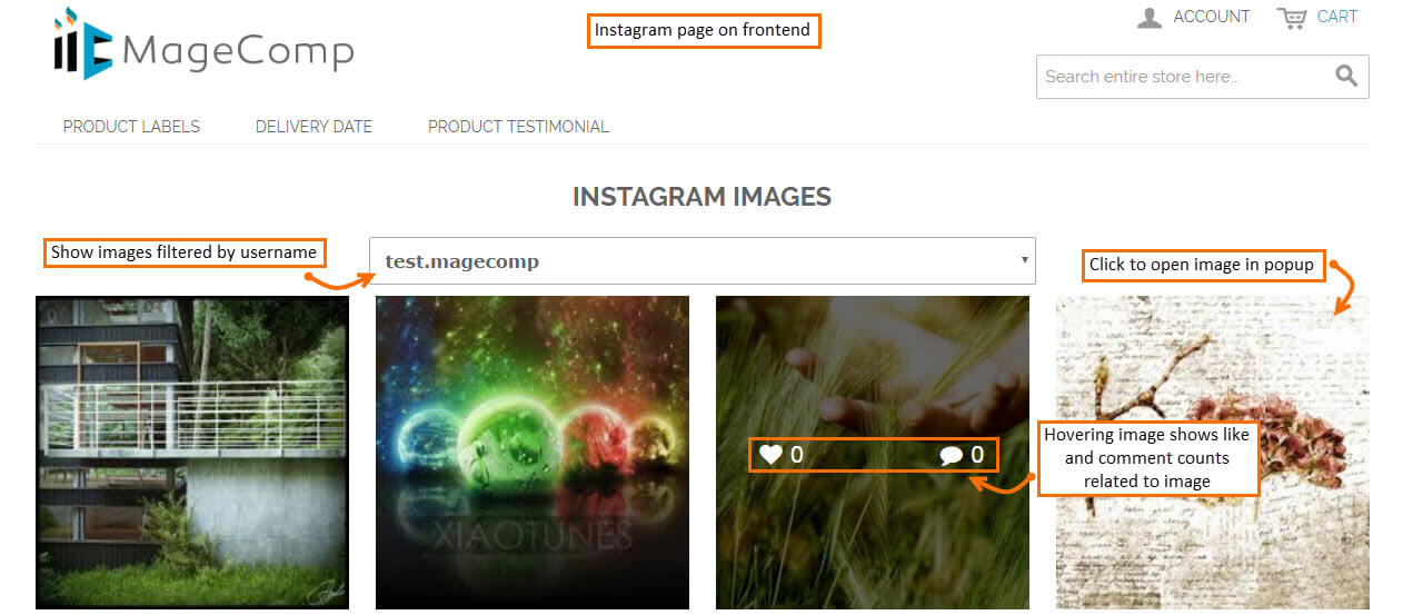 Instagram Page in Frontend
