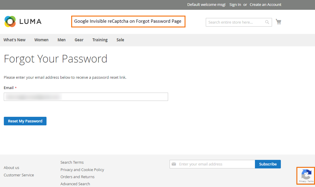 google-invisible-recaptcha-on-forgot-password-page