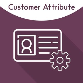 Magento Customer Attribute